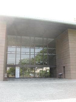 minami-1.jpg