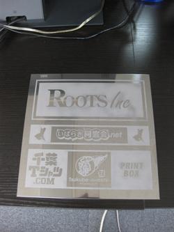 roots-1.jpg
