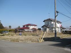 suzu-1.jpg